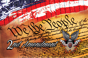 Second Amendment Membership | Stone Hart